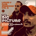 Liquid V Club Sessions Vol 2 - The Big Picture