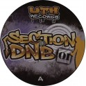 UTH section DNB 01
